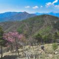 涼しくて虫が少ない!標高の高いキャンプ場を紹介【関東近辺】