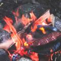 【YouTubeチャンネル更新】道志の森キャンプ場でもくもくと食べる夏のソロキャンプ